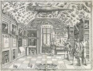 Typisch 18de-eeuwse Wunderkammer