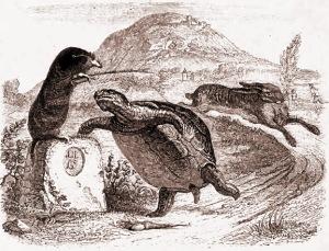 La Fontaine Schildpad en haas